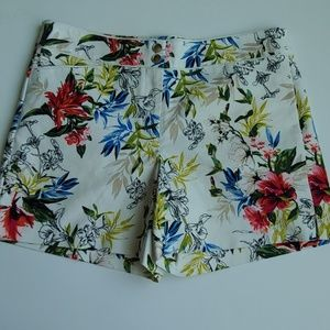WHBM Floral Shorts -Like New